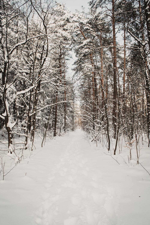Bielefeld im Schnee